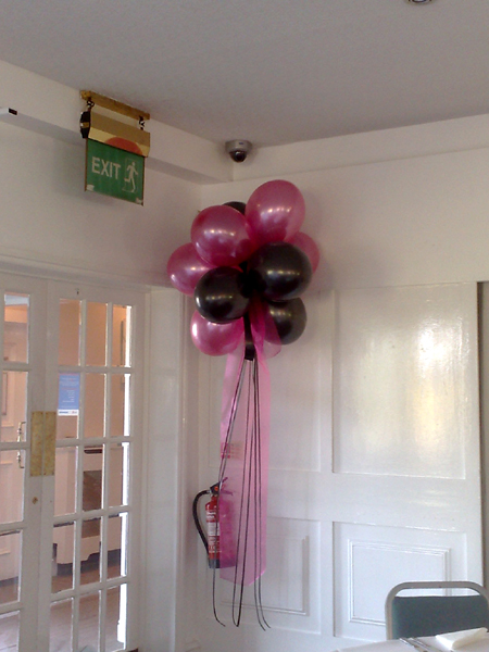 Hall Decoration | Cluster of 10 Balloons