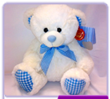 Blue & White Bear